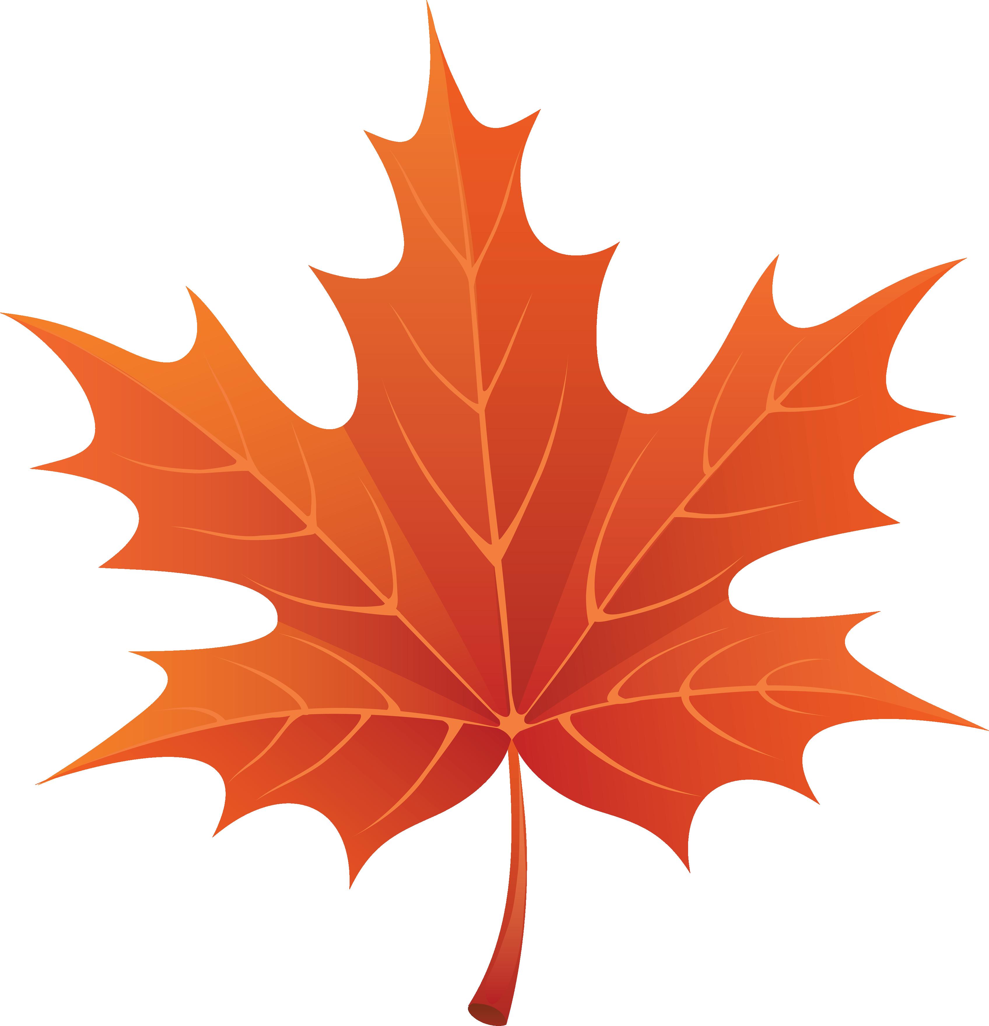 Download Png Image Maple Png Leaf