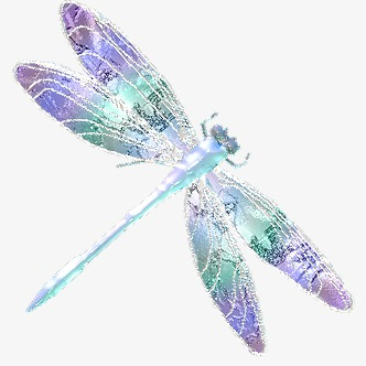 dragonfly, Dragonfly Clipart, Color PNG Image and Clipart