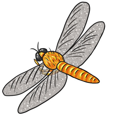 Free Dragonfly Clip Art 14 hdclipartall.com