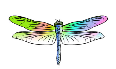 Free Dragonfly Clip Art 8 hdclipartall.com