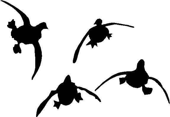 duck hunting clip art