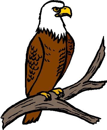 Eagle clip art 2