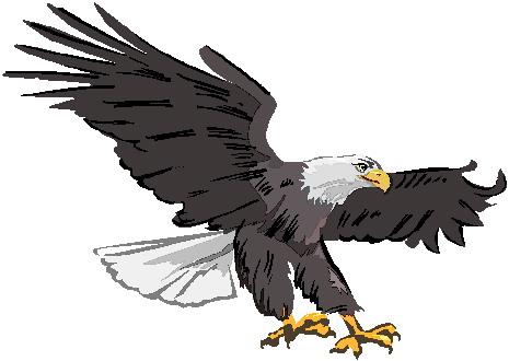 Eagle clip art 3