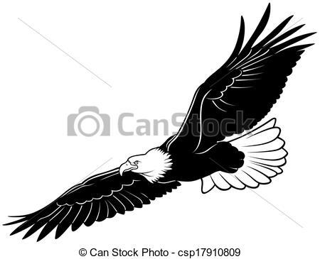eagle Clipartby dagadu17/5,413; Flying Bald Eagle - Black Outline Illustration, Vector