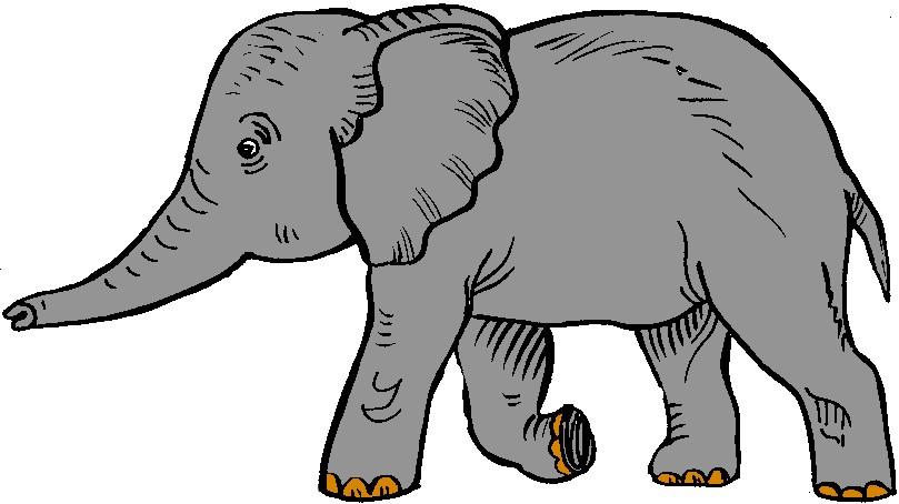 elephant clipart #63