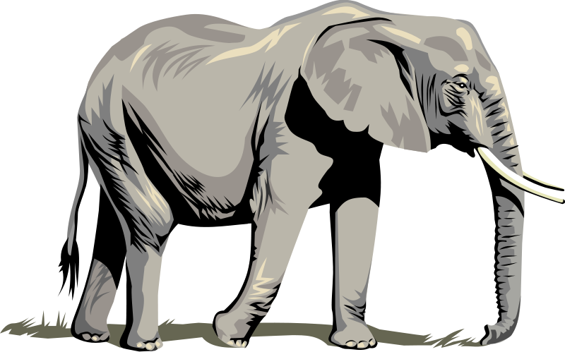 Vector Elephants - Clipart library