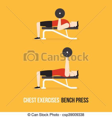 Chest Exercises. Bench Press. - csp39009338
