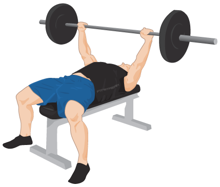 Exercise Bench Png PNG Image