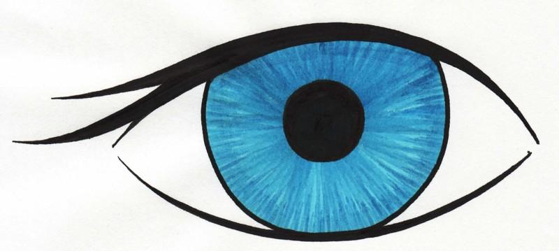 Eyeball human eye clip art