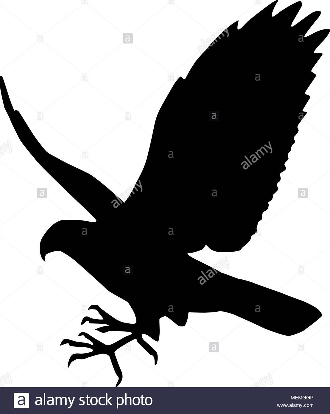 Falcon - Retro Clipart Illustration - Stock Image