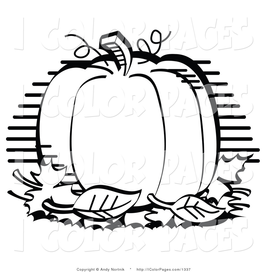 pumpkin clipart black and white