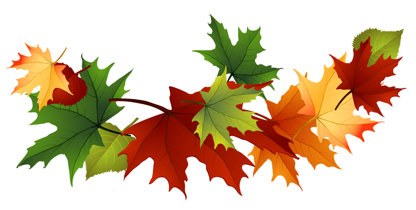 Fall Leaves Clip Art Free Fall Transparent Leaves