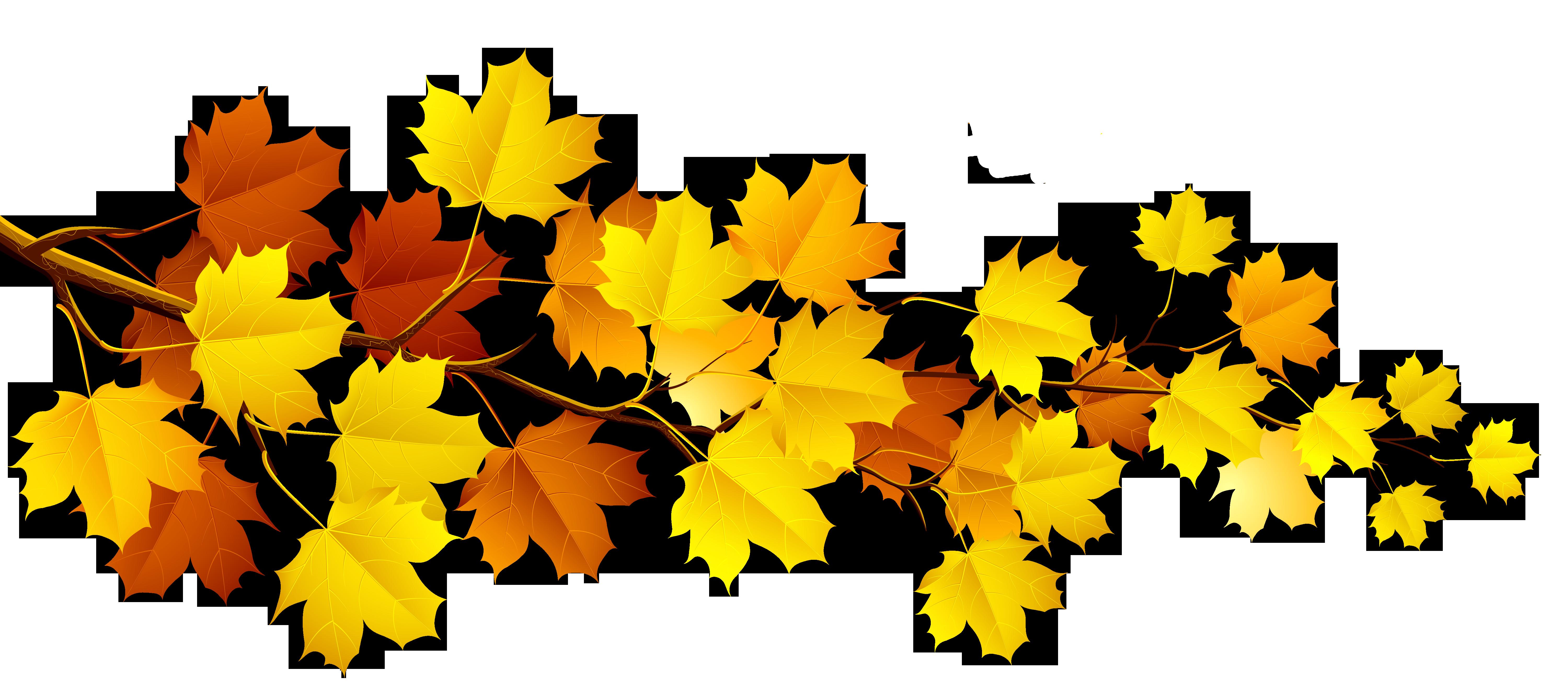 Fall leaves fall clip art autumn clip art leaves clip art clipart 4