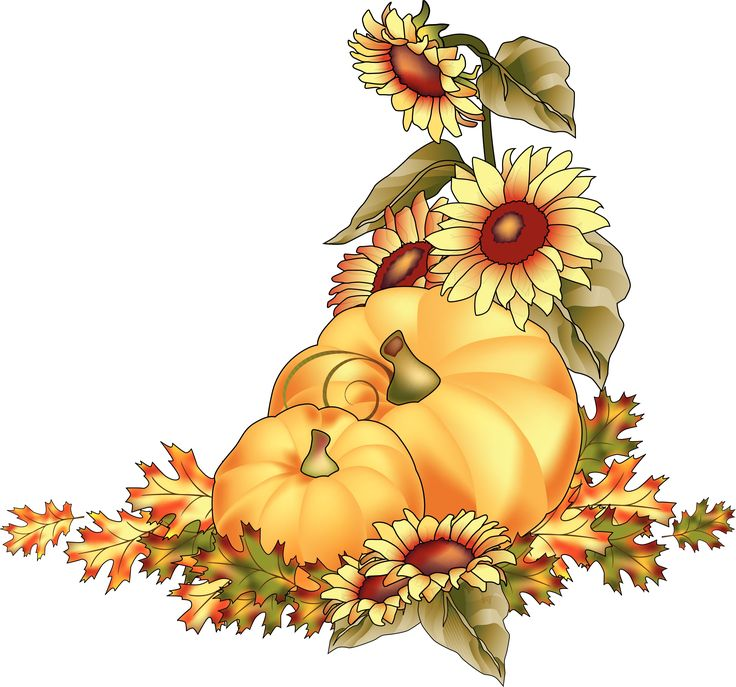 Fall Pumpkin Clip Art | Pumpkins At Harvest Color Clipart