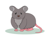 Fat Looking Mouse Clipart Size: 65 Kb