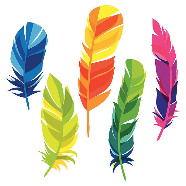 colourful feather clipart