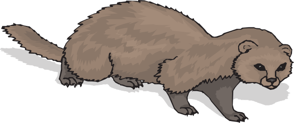 Ferret With Shadow svg