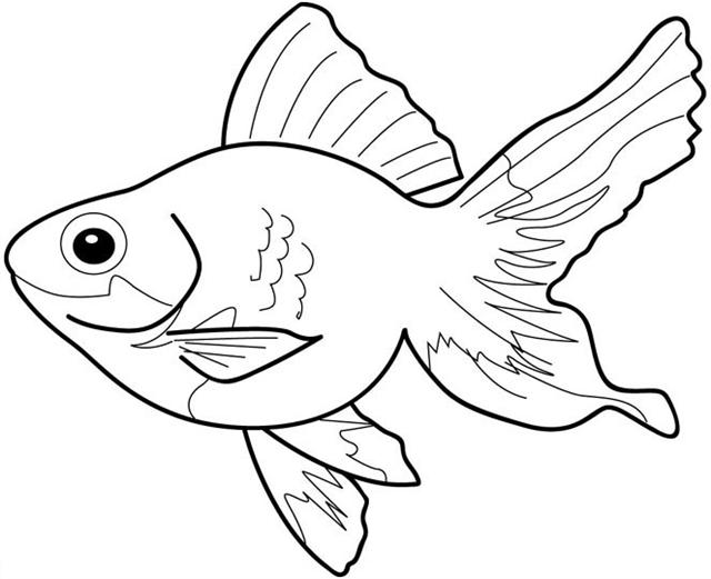Fish black and white fish clipart black and white free