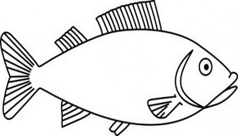 Fish black and white fish outline clipart black and white
