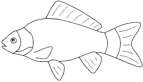 Marine Fish clipart black and white #1