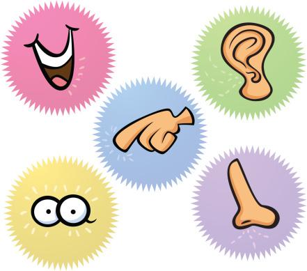 Five Senses Clipart Best. Download
