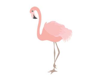 Flamingo Clipart - Digital Vector Flamingo, Bird, Exotic, Coral Flamingo Clip Art for Personal and Commercial Use