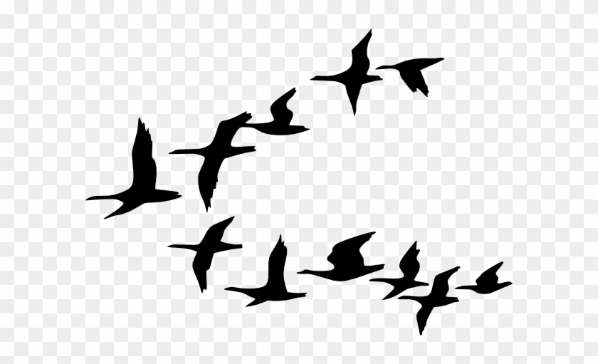 Bird Migration Clipart 2 By Ethan - Flock Of Birds Clipart #1186790