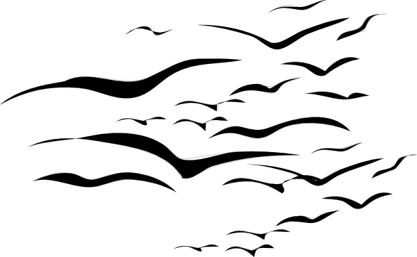 Flock Of Birds clip art