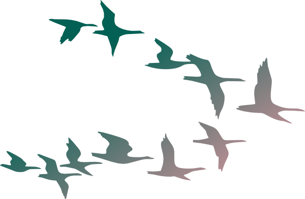 Flock Of Birds Clipart #1