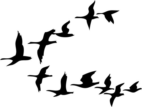 Flock Of Birds Clipart Flight Drawing #2