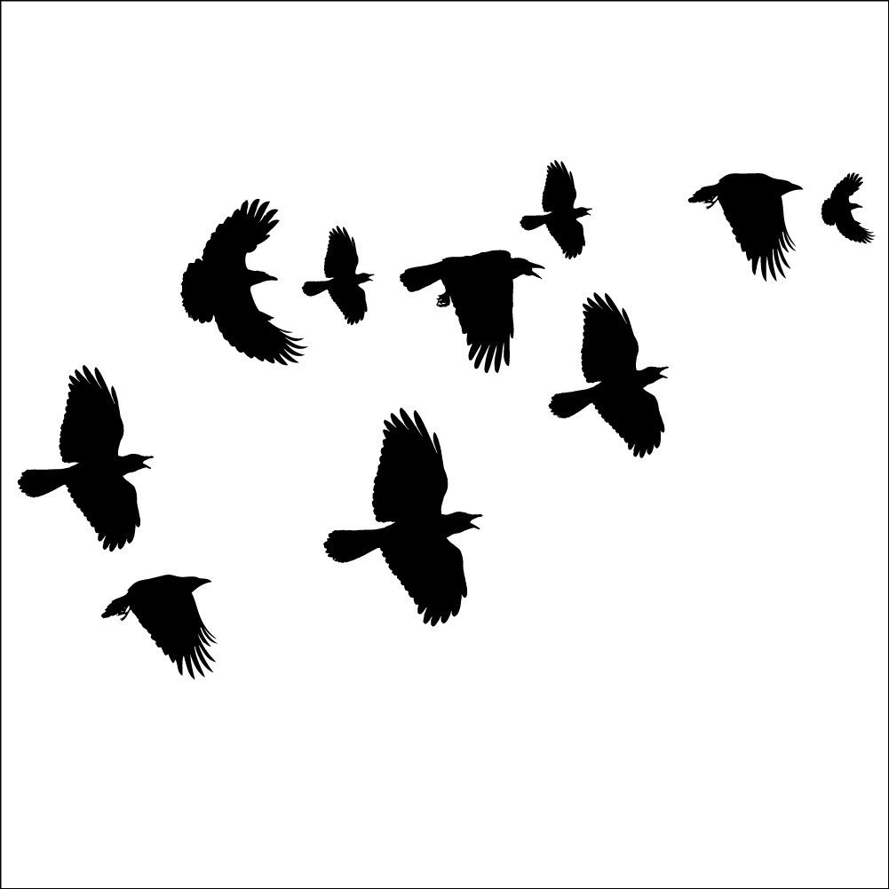 Flock Of Birds clipart flock crows #3