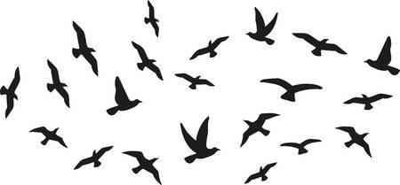 Flock of flying birds