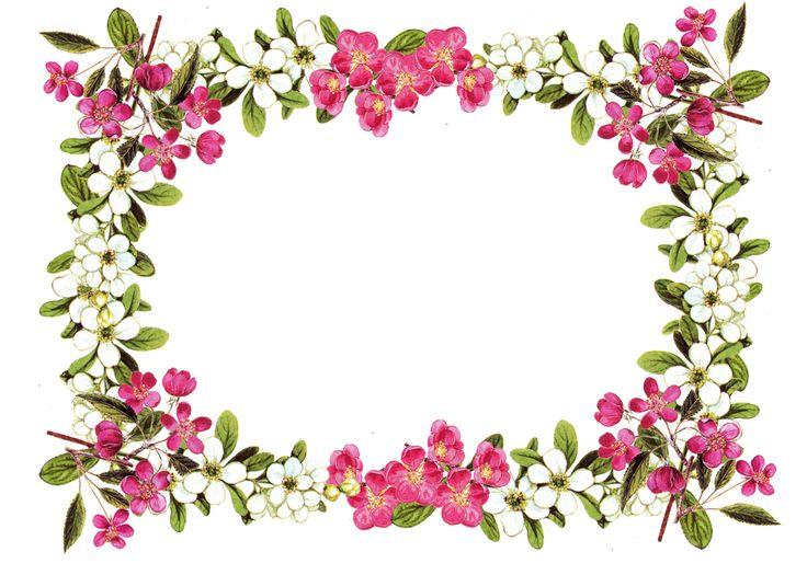 Flower border free printable clip art borders free digital flower