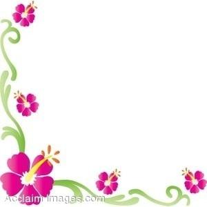 Flower borders, Hibiscus .