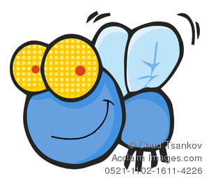Fly Clipart-Clipartlook.com-300