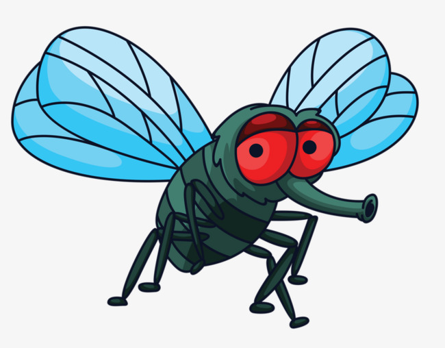 cartoon fly, Cartoon Clipart, Fly Clipart, Red Eyes PNG Image and Clipart