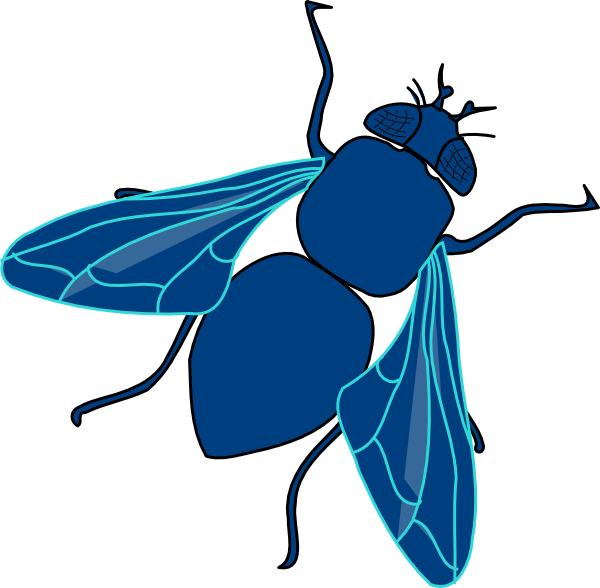 Fly Clipart this image as: