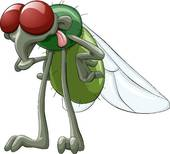 Fly - Fly Clipart