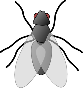 Flying Bug Clipart #1