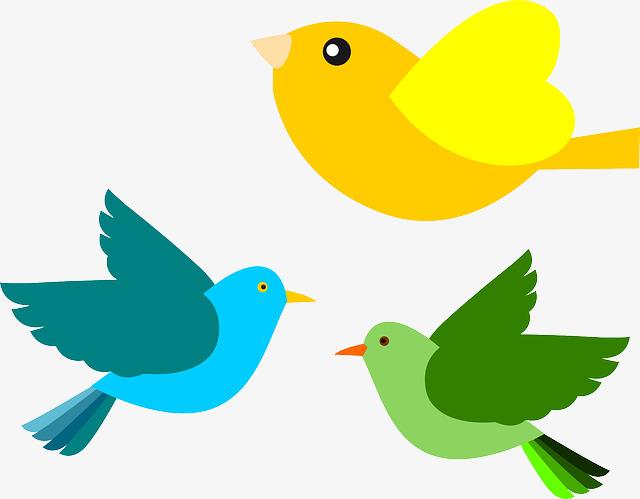 flying bird, Bird Clipart, Cartoon Animals, Cartoon PNG Image and Clipart