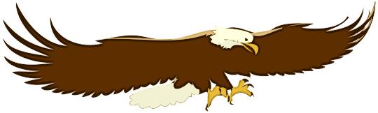 Flying Eagle 02