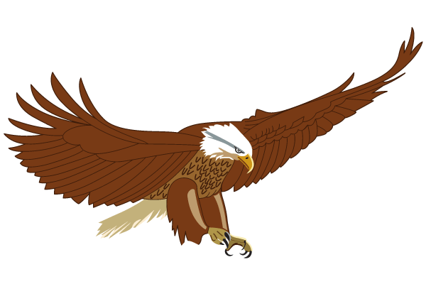 ... Flying Eagle Clipart - clipartall ...