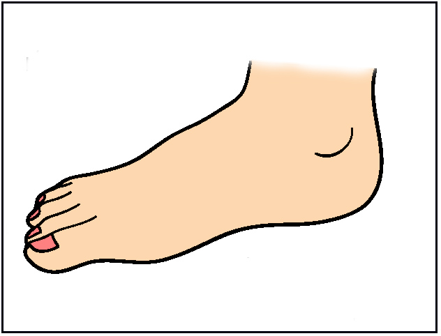 foot clipart
