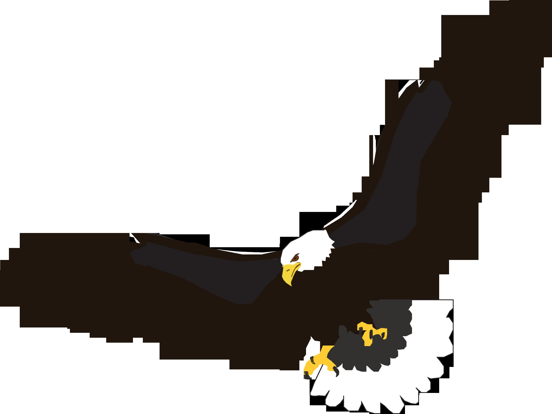 For u0026gt; Flying Eagle Clipart