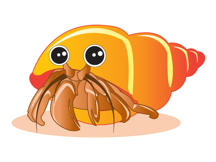 For Hermit Crab Clipart. Draw a Hermit Crab