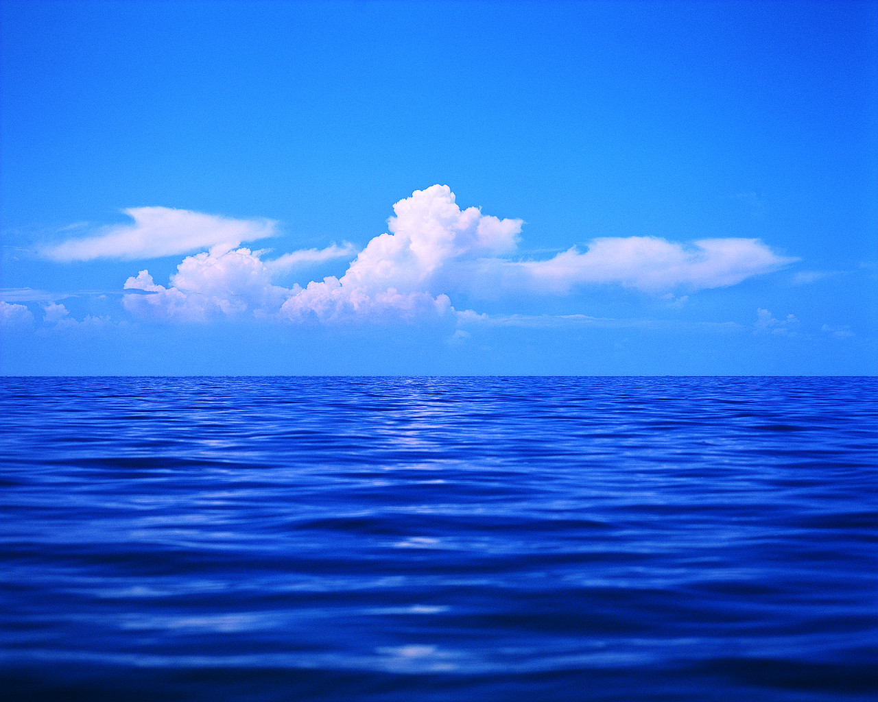 For Many Years Those Who Love The Ocean For A Variety Of Personal