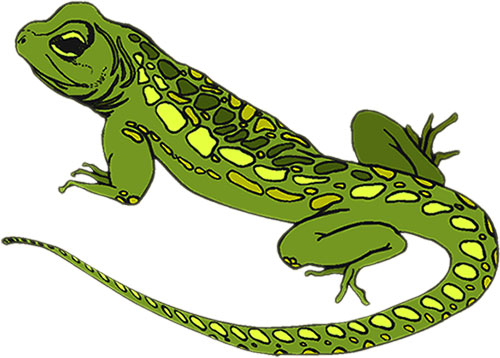 Free Animated Animals Birds Lizard Clipart