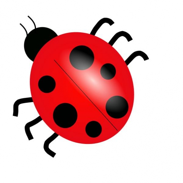 Free Bug Clipart
