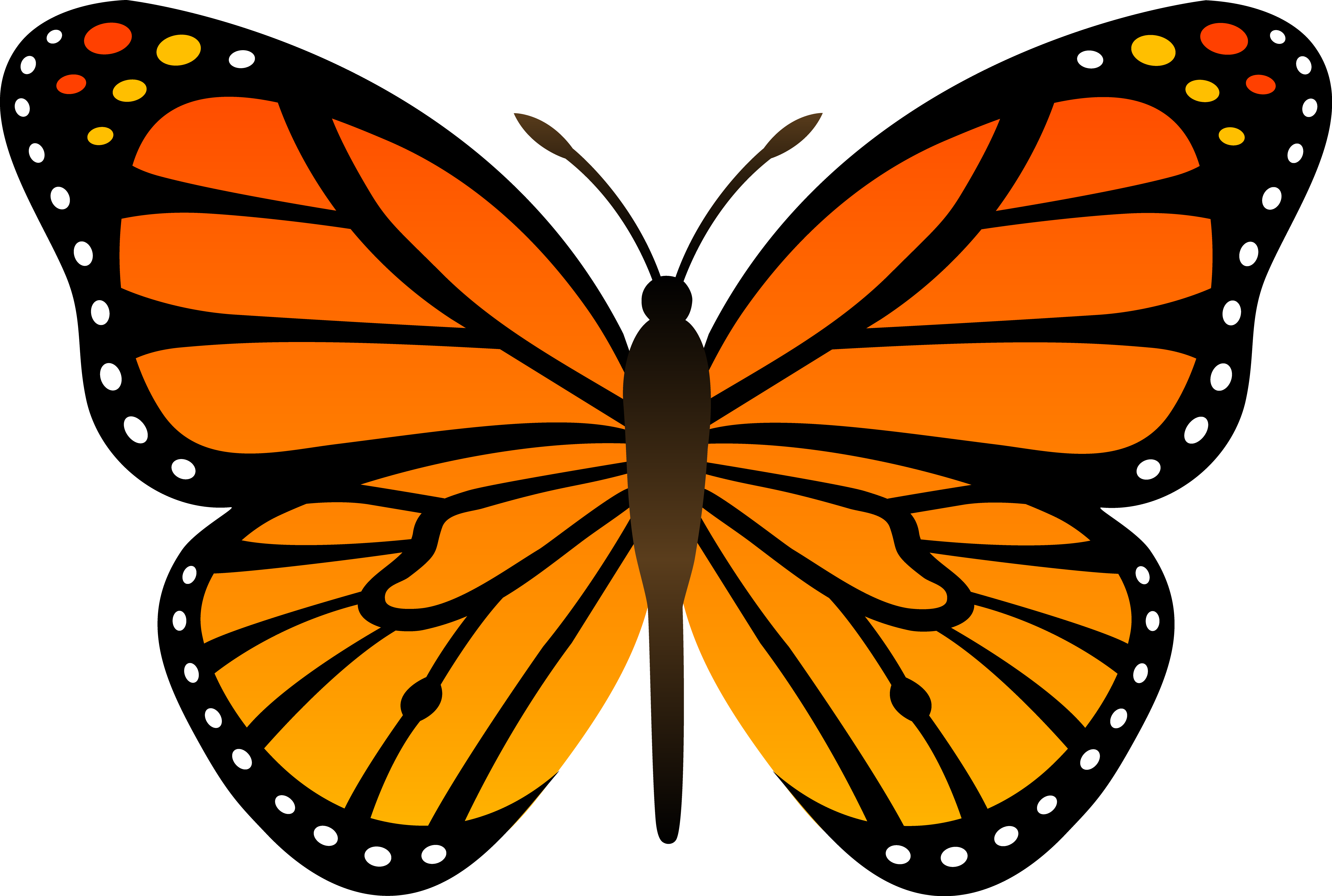 FREE Butterfly Clip Art 16. Butterfly Cartoon Pictures