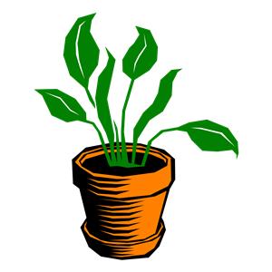 Free Clip Art Plant